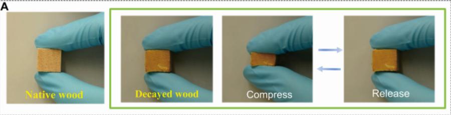 圧縮性の高い木材に