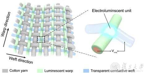 縦糸に発光繊維、横糸に透明導電性繊維を使って布を織った。2つの繊維の交点に電界が作られピンポイントな発光を制御できる。