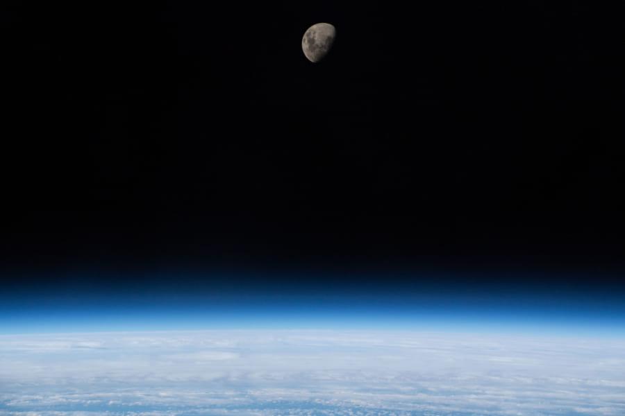 地球の生物670万種の精子・卵子サンプルを月で保存する「ノアの方舟」計画が考案される