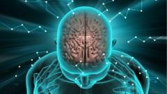 心臓のように電気的臓器である脳に対しても電気刺激が効く