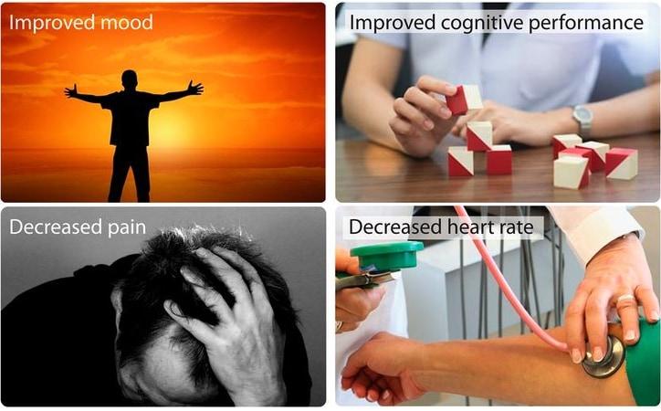 心の回復、認知機能の改善、痛みの緩和、心拍数の低下