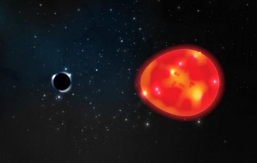 ブラックホールの潮汐力が赤色巨星を歪めているように見えた。