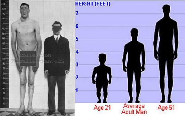 アダムの身長の伸び