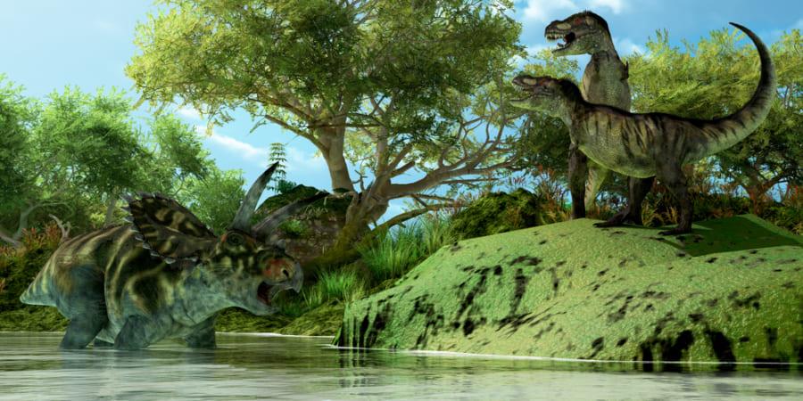 ティラノサウルスは「社会的な動物」だった? 単独でなく、群れで狩りをしていた説が浮上