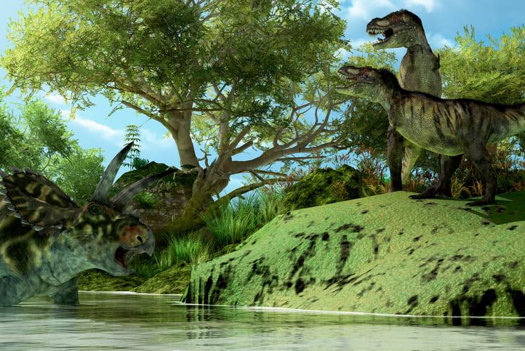 ティラノサウルスは社会的な動物だった?