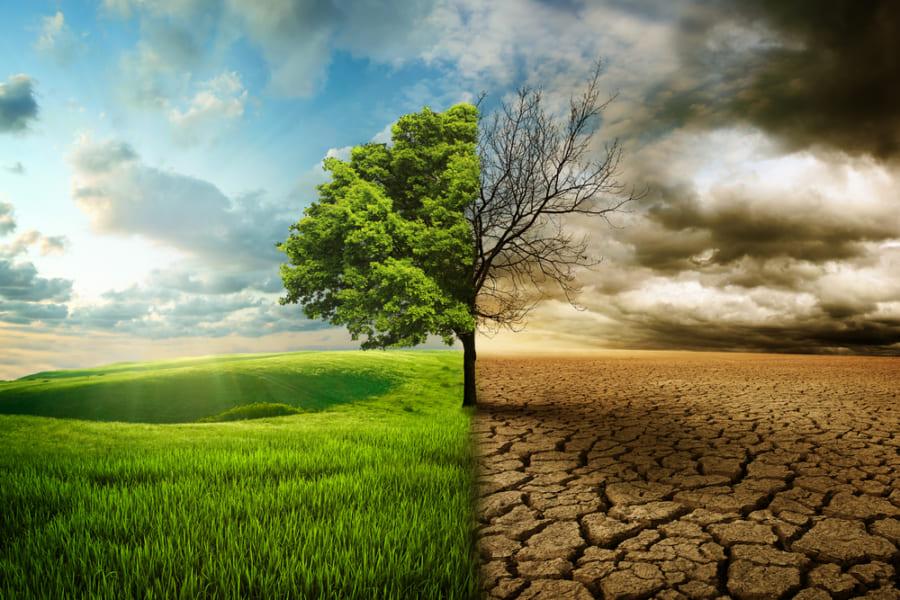 「2050年までに人類は滅亡する」オーストラリアが発表した文明崩壊のシナリオは防げるか