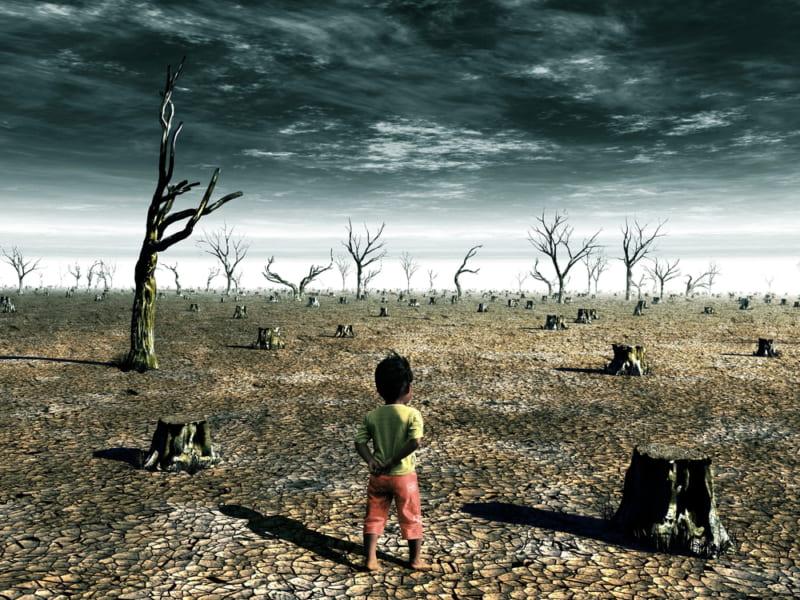 自然の崩壊後、人間性も壊れていく