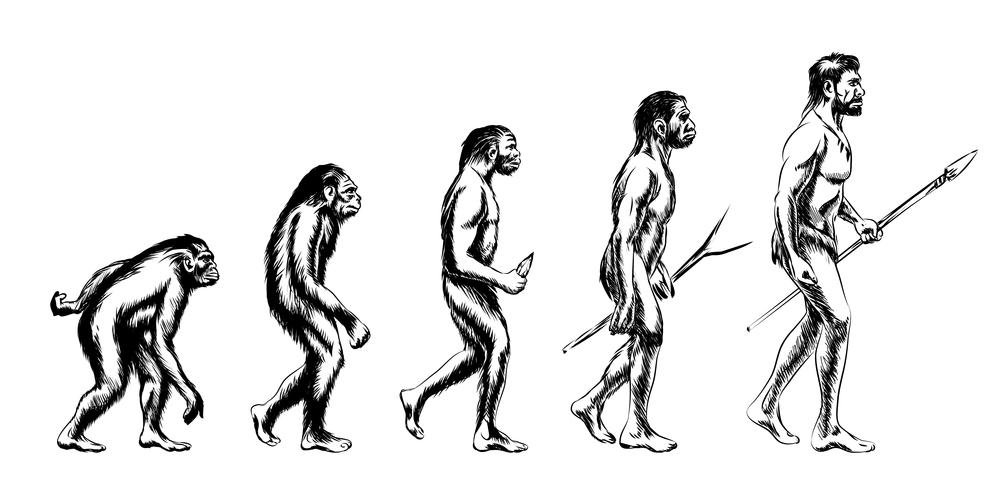 ヒトは進化の始まりから「雑食」ではなかった?