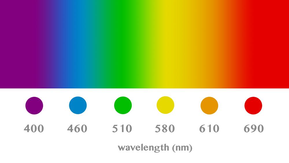 可視光スペクトル