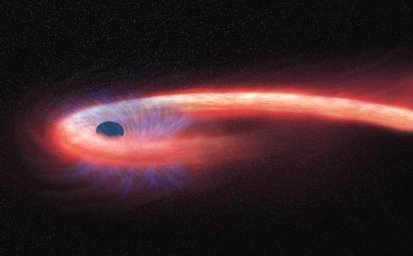 ブラックホールで「スパゲッティ化された星の影」が初めて観測される