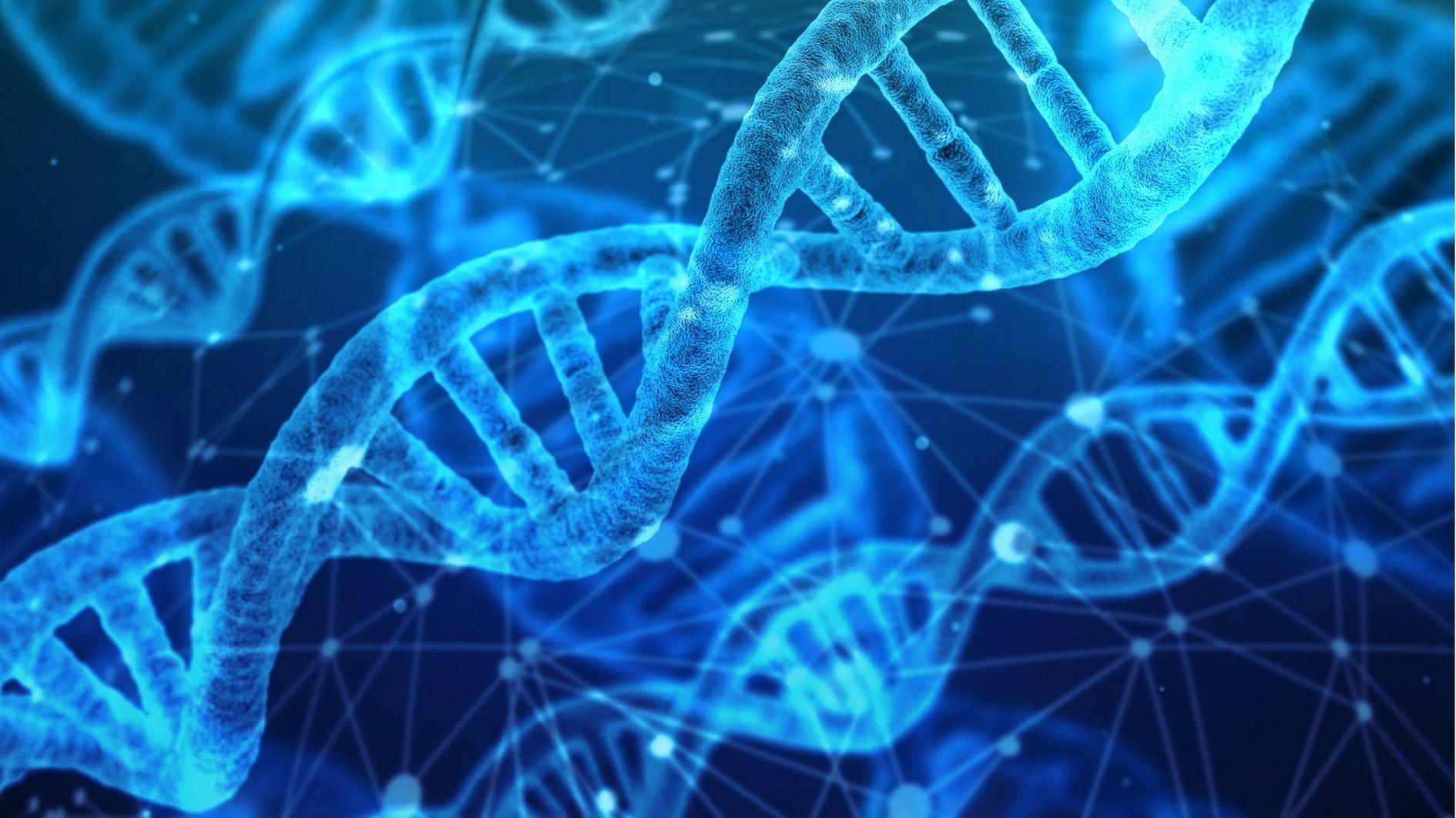 105歳を超える超長寿の人々は生まれつき「長寿の遺伝子」を持っていた