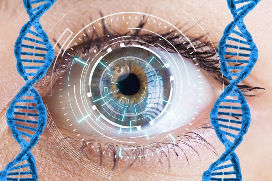 植物の遺伝子を目に加えて視力を回復させることに成功