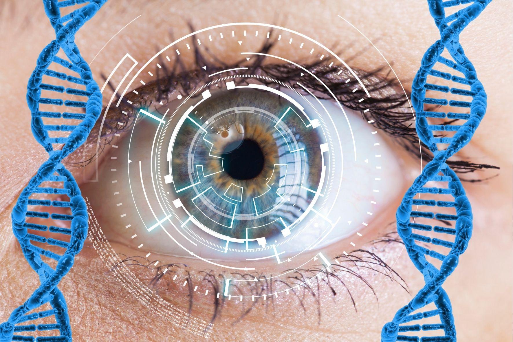 光遺伝学的手法そのものを遺伝子治療にすることに成功