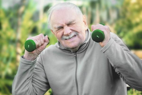 老化で減少した筋肉を再生させる方法が見つかる