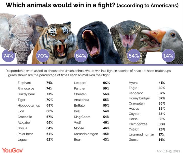 アメリカ人の思う「百獣の王ランキング」