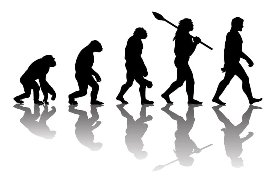 実は既知の化石は現生人類につながらないことが発覚ー人類共通祖先のミッシングリンク