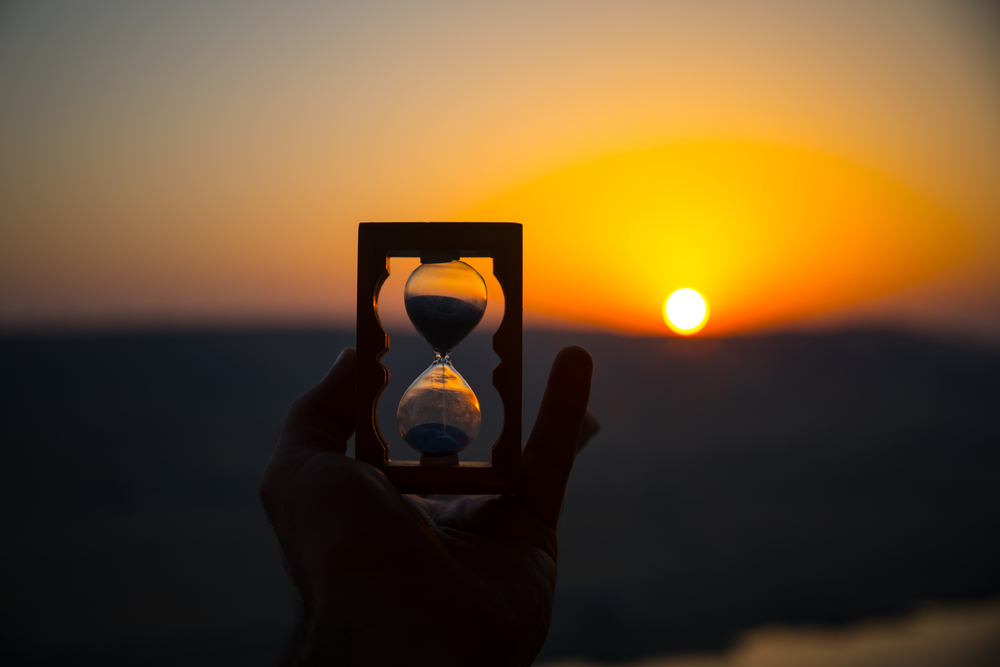 1日のリズムを刻む体内時計はすべての生物共通の祖先ももっていた