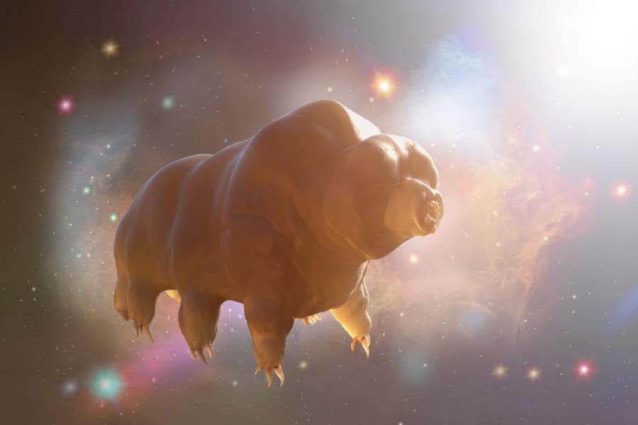 小惑星に乗って宇宙空間に拡がれる?