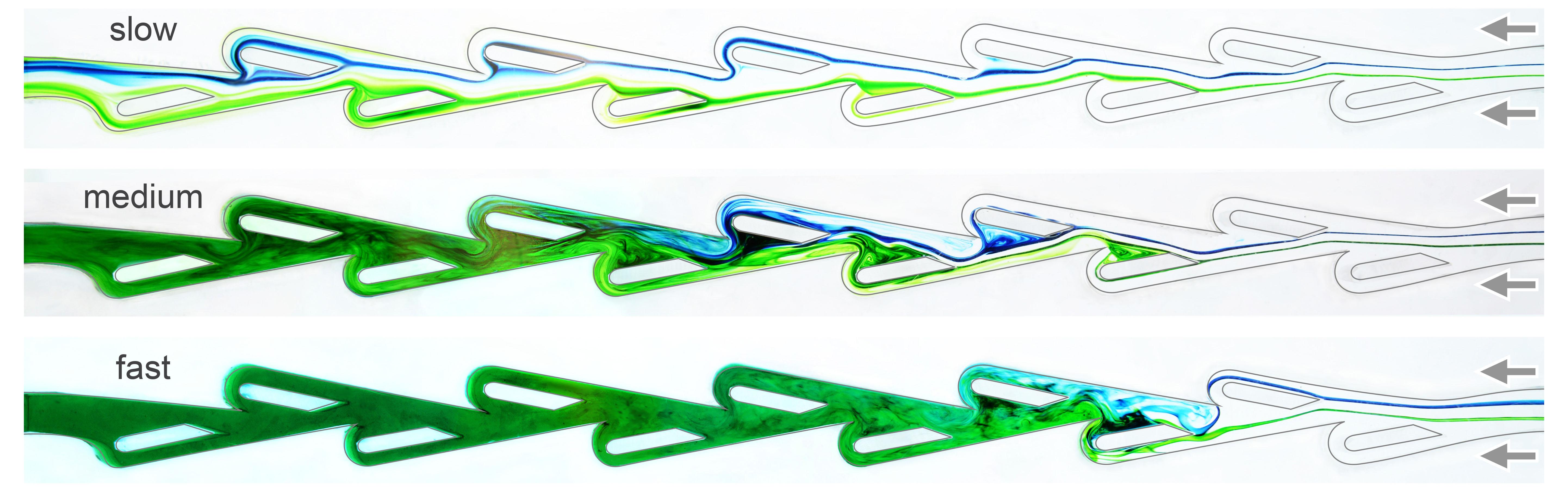 青と緑、2つの流れを逆方向にテスラバルブへ流した場合の測定。上から順に、流体の速度を増やして実験している。濃い緑色の部分は青と緑の流れが乱流となってほとんど流れていない状態。