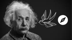 アインシュタインは動物の超感覚を予測していたと判明!