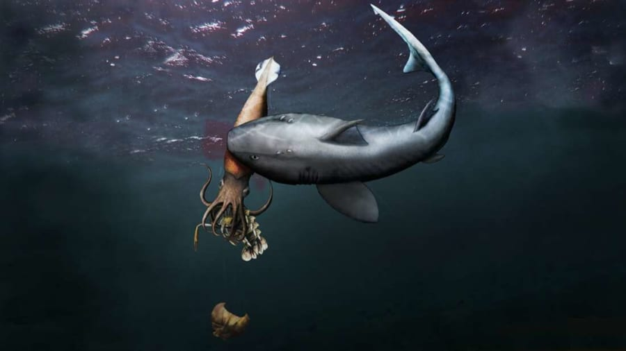 「エビを食べてサメに食べられたイカ」の化石発見