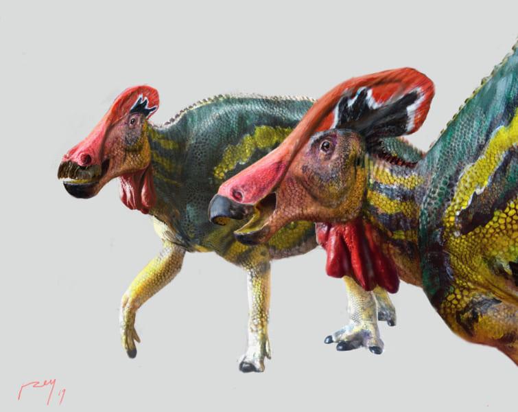 「おしゃべりな新種の恐竜」を発見! トサカで数キロ先の仲間と会話