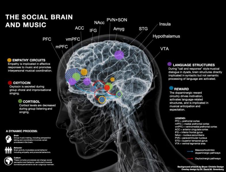 音楽の場にいる時の脳モデル