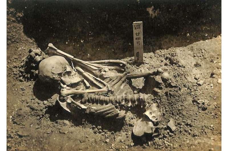瀬戸内海で「3000年前にサメに襲われて死んだ男性の遺骨」を発見