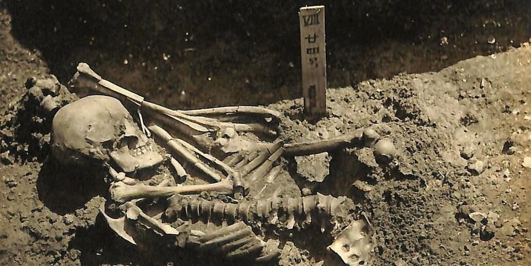 サメに襲われた3000年前の犠牲者を発見