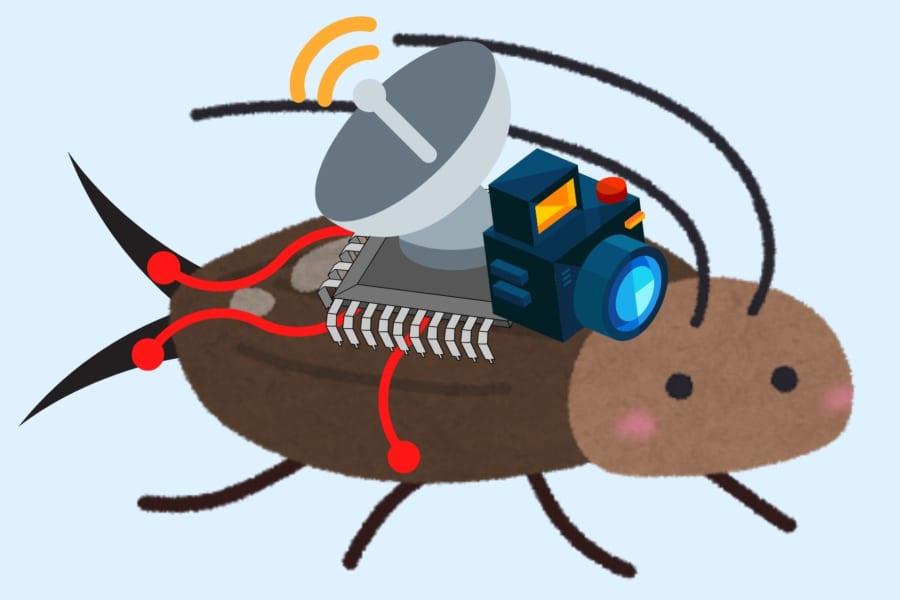 人命救助のために「生きたメカゴキブリ」をリモコンで制御することに成功