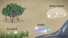 反射光は水辺のほかにたくさんある