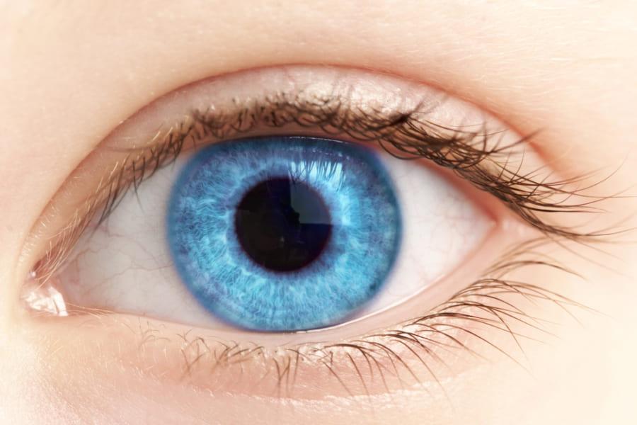 「瞳孔のサイズが大きいほど知能が高くなる」という研究結果