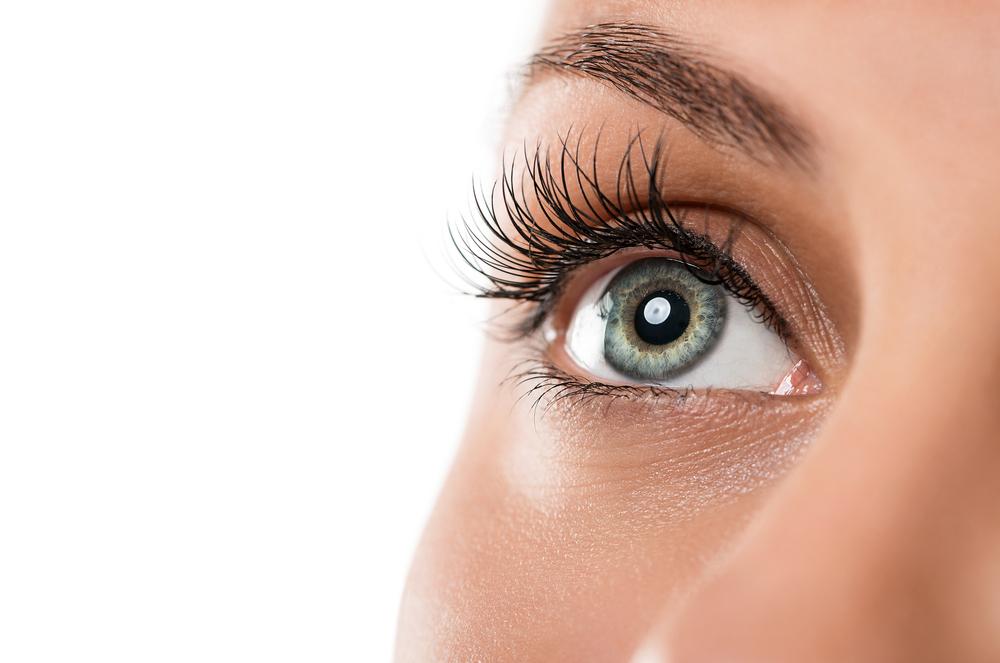 瞳孔の平均サイズは2〜8ミリ