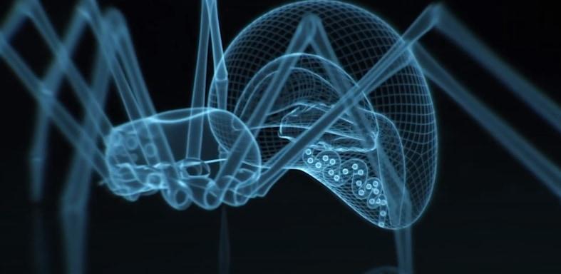 蜘蛛の糸は独特なタンパク質構造によって高い強度をもつ