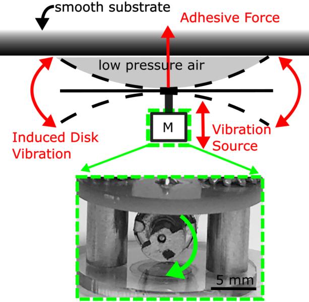 モーターが円盤を振動させ、壁と円盤の間の空気薄膜に負圧を発生させる