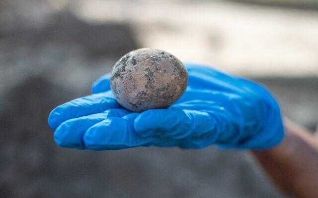 人のうんちの中から「1000年前の鶏卵」が完璧な状態で見つかる