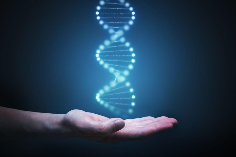 実はヒトゲノム計画は完了していなかった!? はじめて全塩基配列の解読が終わる