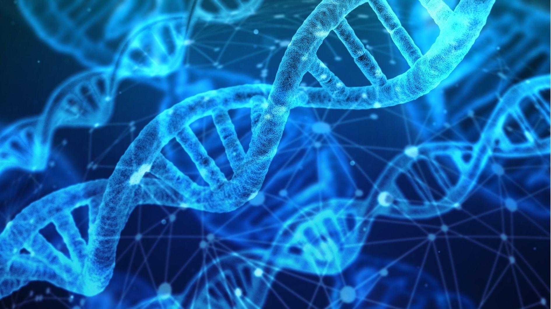 20年ぶりにヒトゲノムの全塩基配列が決定! 本当の意味での解読終了