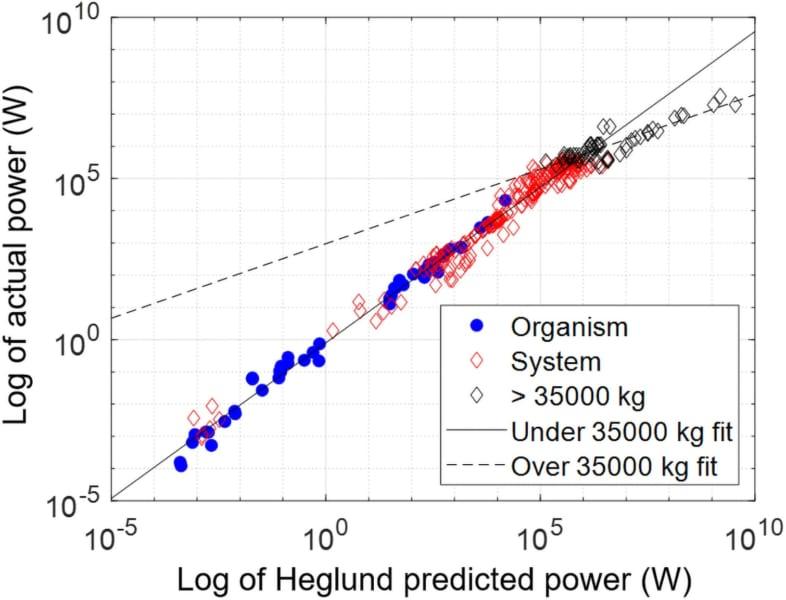 生物および人工システムの実際の出力(縦軸)と予測出力の対数