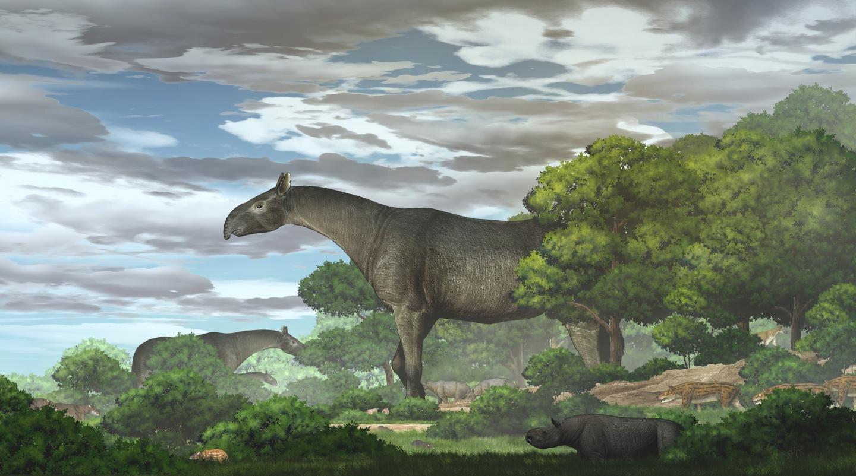 新種の巨大サイの復元イメージ