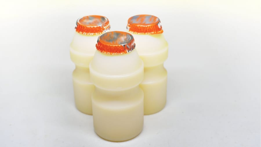 フェカリス菌は代表的な乳酸菌のひとつ