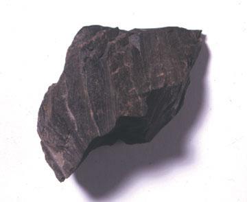 頁岩のサンプル写真
