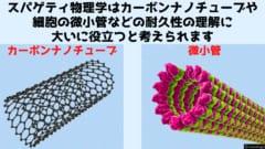 スパゲティから得られたデータは最新の材料科学や分子生物学でも活かせる