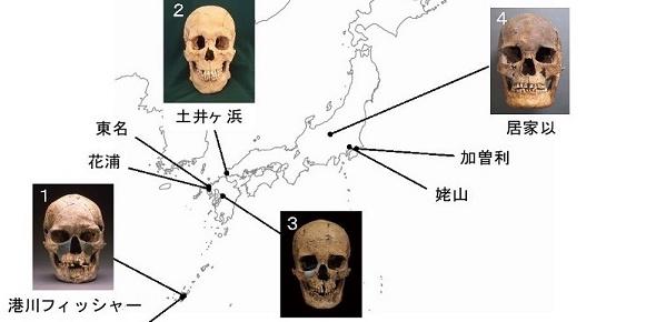 日本の遺跡で発見された人骨