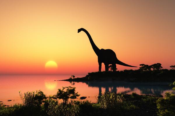 恐竜は隕石落下前からすでに絶滅に向かっていたという研究
