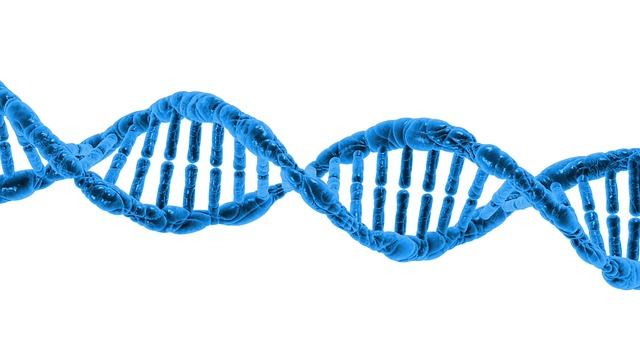 オリジナルDNAは1.5〜7%