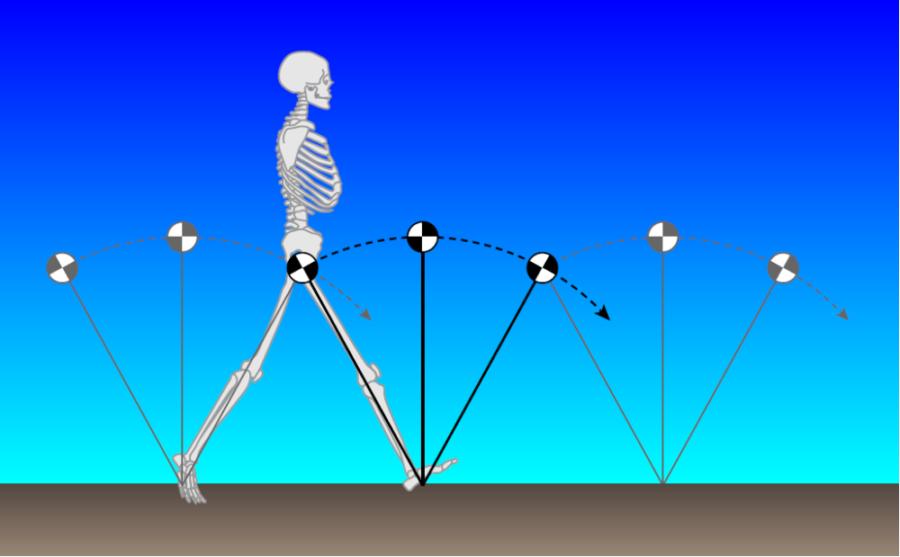 倒立振子モデル