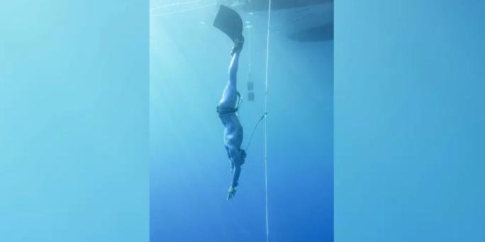 トップダイバーの潜水中の心拍数はイルカ並みと判明