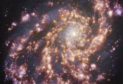 地球から約4,500万光年離れた銀河銀河NGC 4254の画像