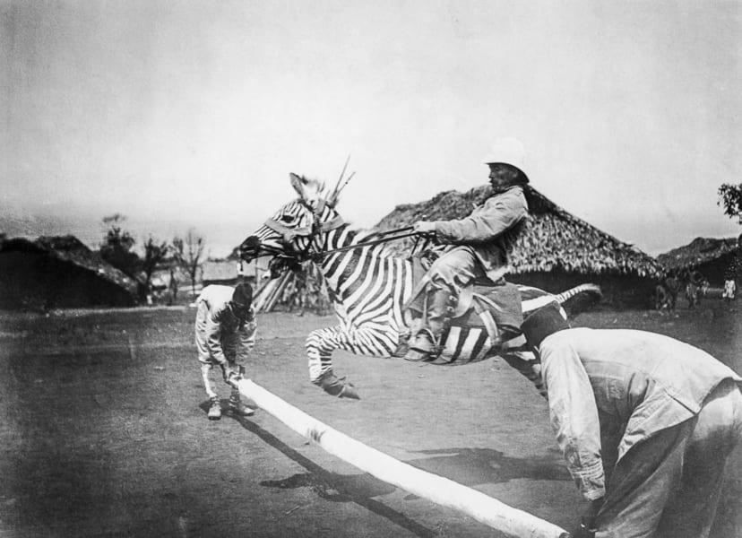 シマウマの乗馬を試みるドイツ兵(1900年前後に撮影)